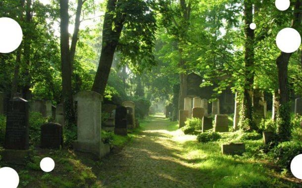 Muzeum Sztuki Cmentarnej | Cmentarz żydowski