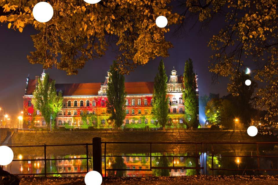 Noc Muzeów 2021 w Muzeum Narodowym we Wrocławiu