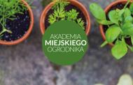 Akademia Miejskiego Ogrodnika - Jak uprawiać zioła w domu?