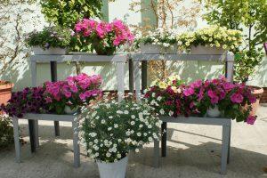 Kolorowe Balkony i Tarasy