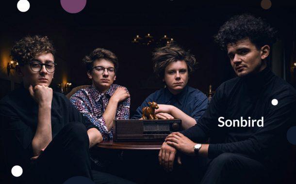 Sonbird | koncert (Wrocław 2020)