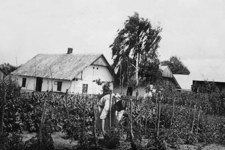 Podlwowska wieś Sokolniki nadawnej fotografii | wystawa