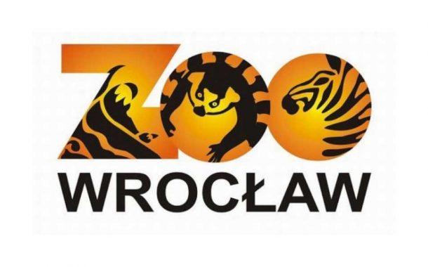 Wrocławskie ZOO   Afrykarium
