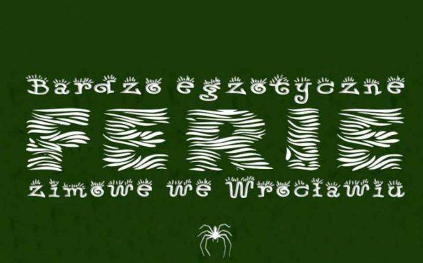ZOO TEAM | Ferie Wrocław 2020