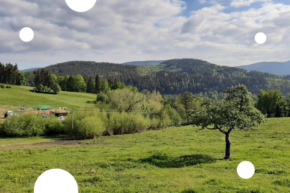 Wzgórza Włodzickie – Cykl weekend na Dolnym Śląsku