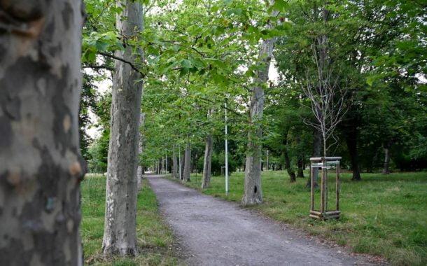 Park Skowroni spacerkiem