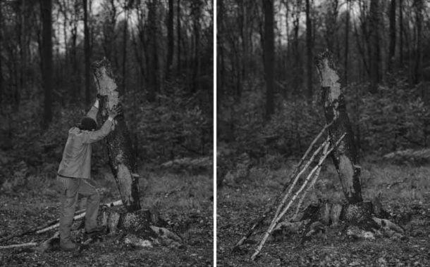Prace leśne - Michał Łuczak | wystawa