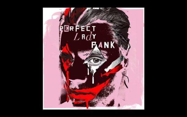 Perfect Lady Pank - Marcin Januszkiewicz | koncert