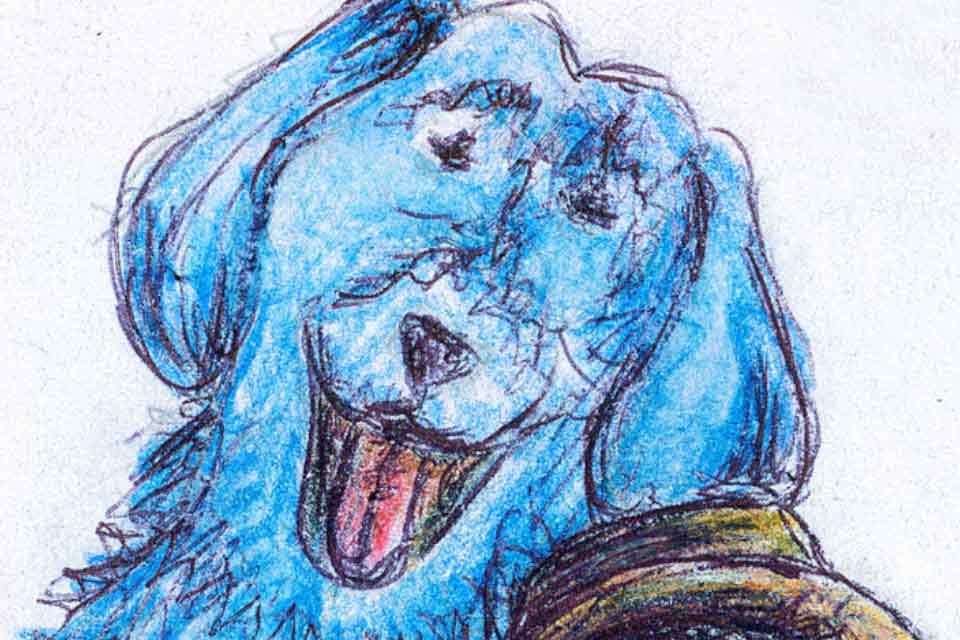 Błękitny pies   spektakl familijny