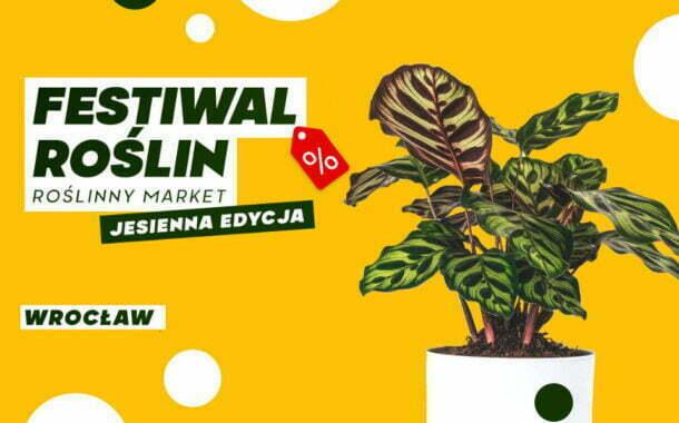 Festiwal Roślin we Wrocławiu - 2021 - Czasoprzestrzeń