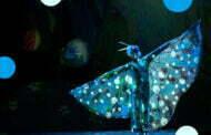 Błękitny Pies | spektakl