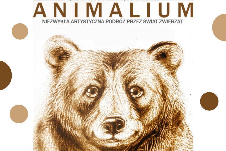 Animalium | koncert